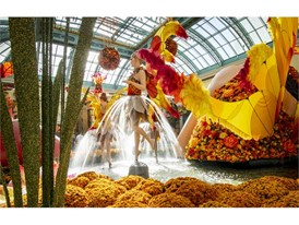 Cascading water forms skirts for fairies in the autumn display at the Bellagio Conservatory and Botanical Gardens