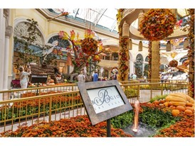 The autumn display is unveiled at the Bellagio Conservatory and Botanical Gardens