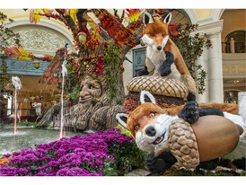 Foxes cavort around the base of the talking tree in the autumn display