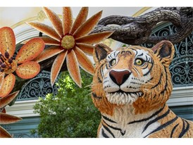Animated tigers watch over the autumn display
