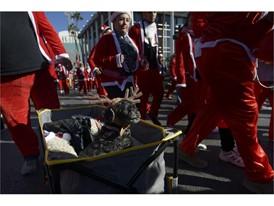 Santa Run Dog