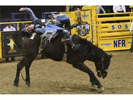Orin Larsen competes in bareback riding