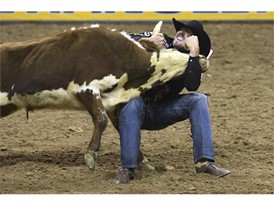 Tyler Pearson competes in steer wrestling