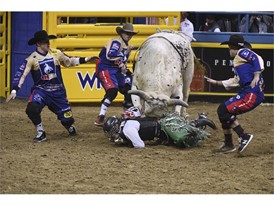 Bull fighters come in to help Jeff Askey