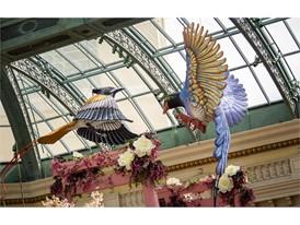 Flower-feathered birds