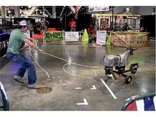 Steer roping practice