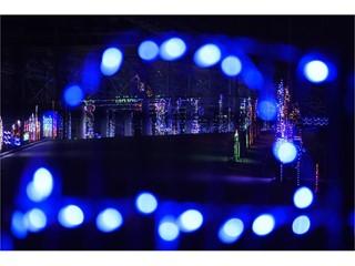 Glittering Lights
