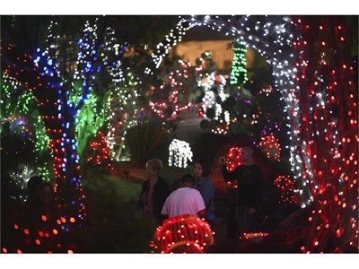 Ethel M Chocolates Holiday Cactus Garden