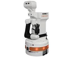 The TIAGO robot from PAL Robotics