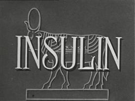 Novo Nordisk history: Production of insulin in the 1940's