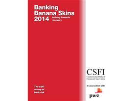 Banking Banana Skins 2014 cover