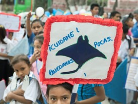 Children take part in a street parade to raise awareness of manta rays.