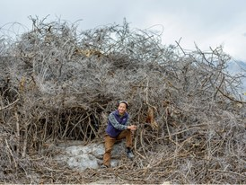 Laureate Sonam Wangchuk uses natural materials like bushes to start ice formation.