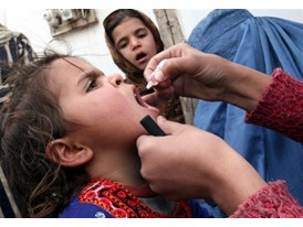 Children  are immunized against polio in Afghanistan