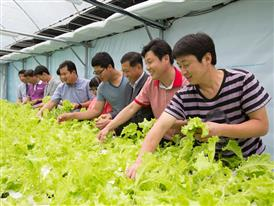 Horticulture Project: Andong Young-Myeong Special Education School