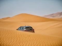 A Leon in the desert