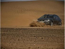 In order to drive across a dune, you have to face it straight on and go up at a certain speed