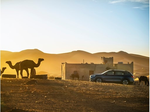 SEAT Tarraco at the SEAT Desert Camp in Morocco