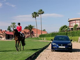 Footage HD - Cupra VS Horse