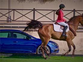 Cupra VS Horse ESP-HD (Sin Ending)