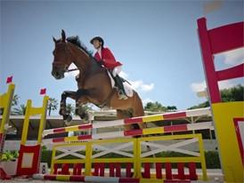 Cupra VS Horse ENG-HD