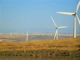 Windy Flats – Goldendale