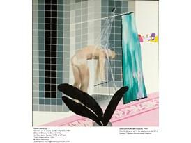 Hockney_shower