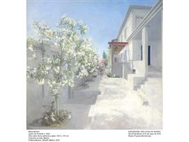 Moreno - Garden