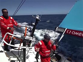 Thanksgiving special, Towill, Enright on Vestas 11th Hour Racing