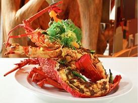 Lakeside - Lobster