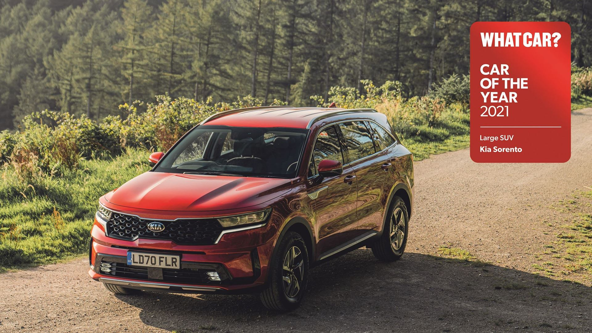 All-new Sorento wins 'Large SUV of the year' at 2021 What Car? Car Of The Year awards - Image 5