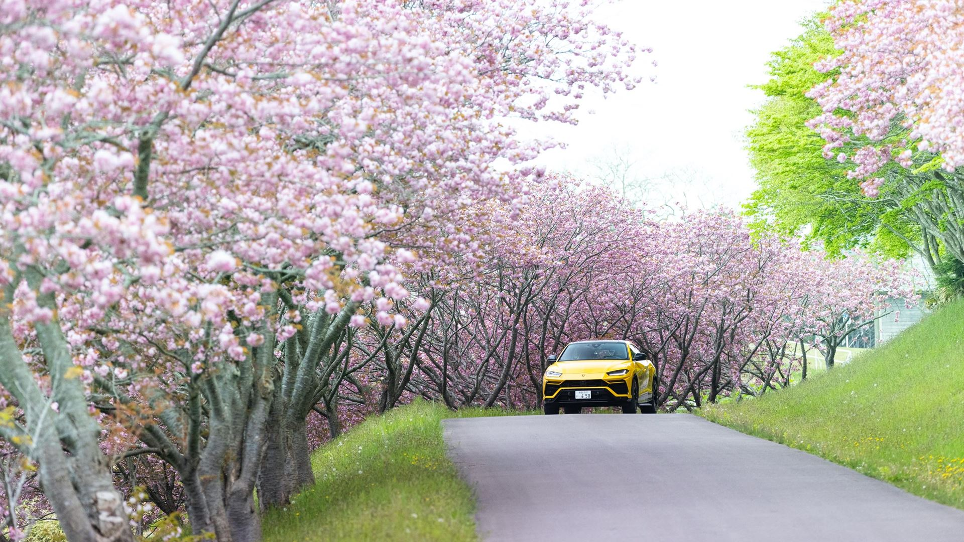"""""""UNLOCK ANY ROAD JAPAN"""" Urus expedition over 6.500 Km across Japan - Image 6"""