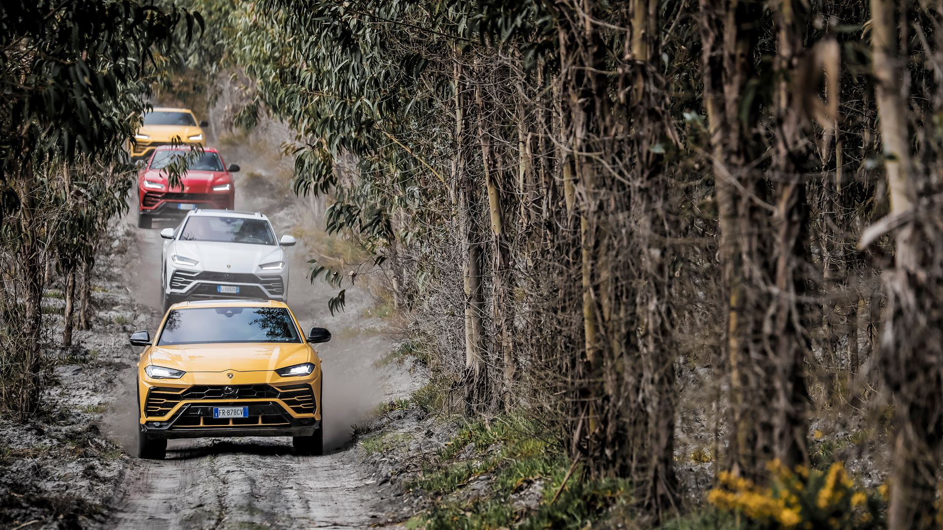 Automobili Lamborghini celebrates the 15,000th Urus - Image 4
