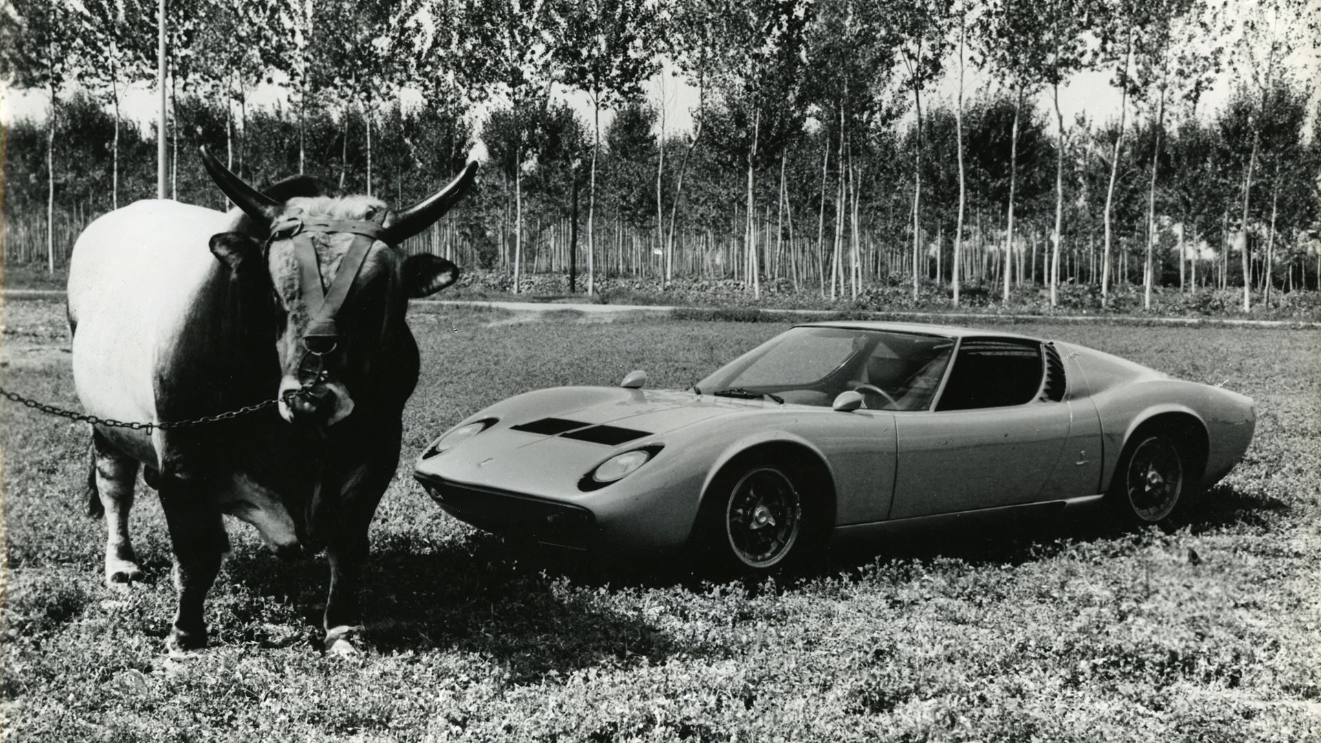 Lamborghini: records from the past that you might not know about. From the lowest Lamborghini to the first Super SUV of all time - Image 8