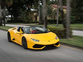 LP610 4 Yellow 053