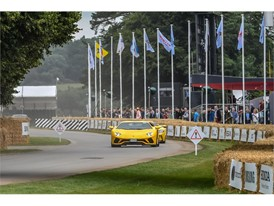 Goodwood FOS 2017-13