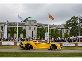 Goodwood FOS 2017-11