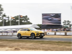 2018 Goodwood Festival of Speed-20
