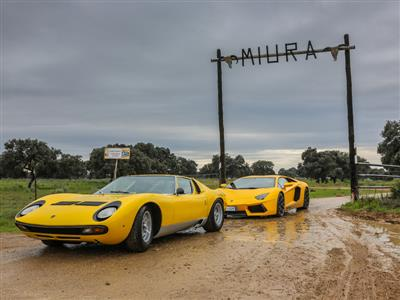 50 years of the Miura: Celebrations Close with trip to bull breeding farm in Spain that lent its nam