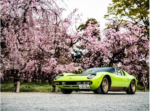 Miura SV(1971), Best Lamborghini,  Concorso d'Eleganza Kyoto 2019 - Credit Remi Dargegen - Automobili Lamborghini