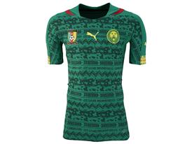 SS14 Cameroon Home Promo ACTV Jersey_744528_01