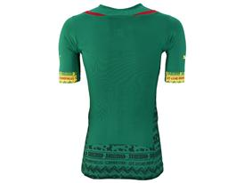 SS14 Cameroon Home Promo ACTV Jersey_back_744528_01